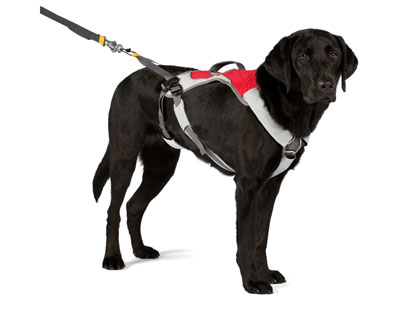 ruffwear-dog-harnessWEB
