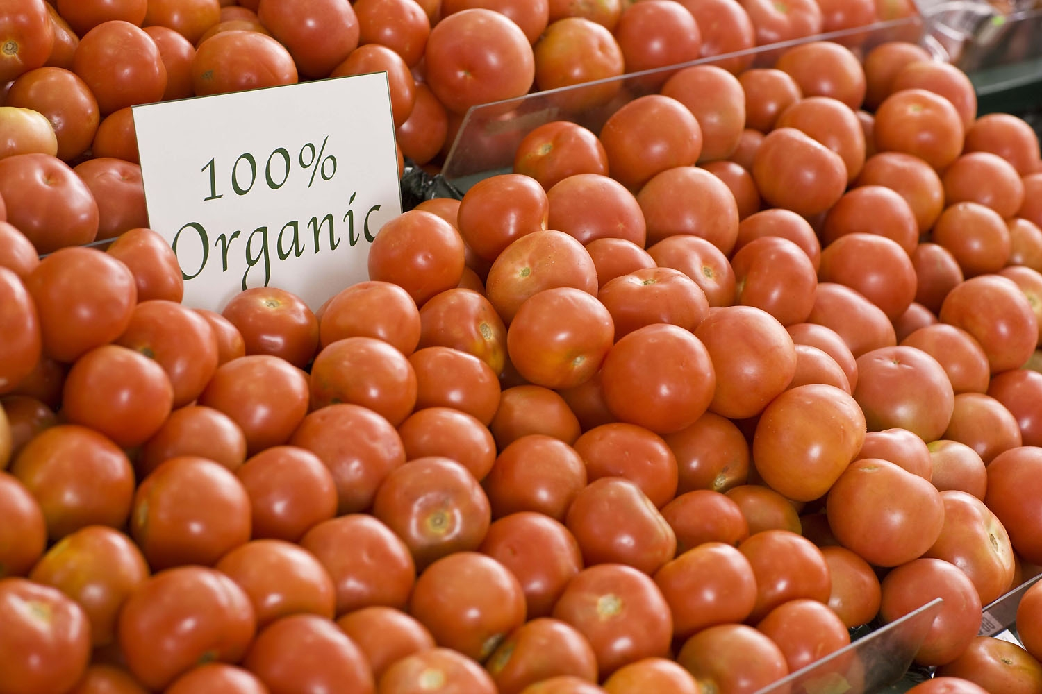 Is Organic Food Healthier Than Conventionally Grown Food