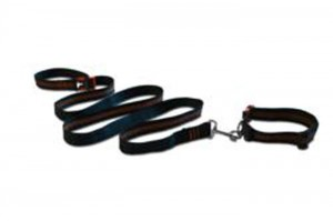 gI_132709_collar-leash-web