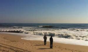 ocean-minded2-web