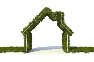 There has never been a better time to renovate green, given the abundance of Earth-friendly building material choices as well as contractors well-versed in energy- and resource-efficiency. Credit: Stockmonkeys.com