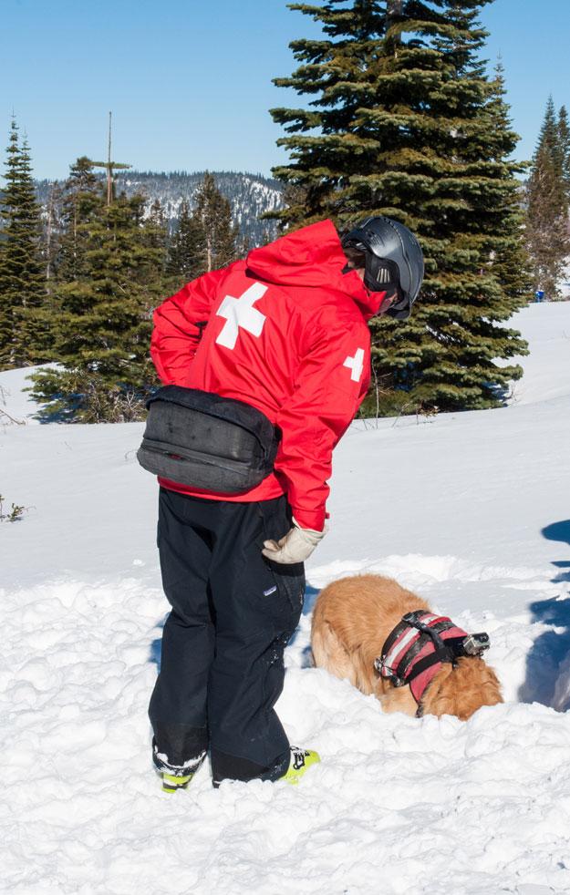 More rescue training for Tucker.