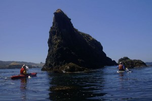 Aquatic Meandering in Mendocino