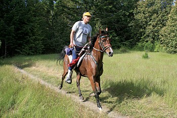 Runner Seeks Same with Strong Horse