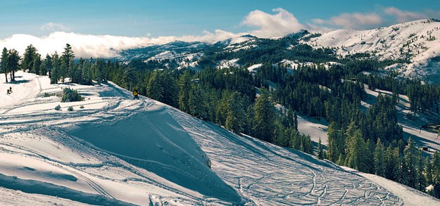 Destination: Bear Valley