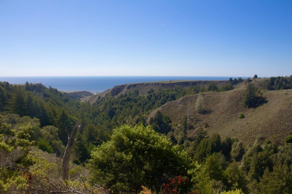 Photo courtesy Mountain Bikers of Santa Cruz (MBoSC).