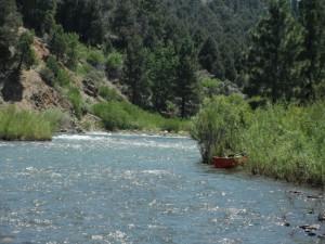 Canoer's Delight:  Paddling the East Fork Carson River