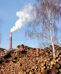 Biomass Controversies