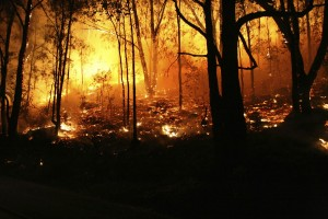 Global Warming, Droughts & Wildfires