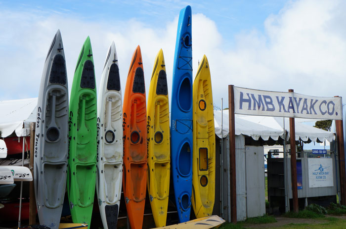 A quiver of kayaks ready for rentals at Half Moon Bay Kayaks.