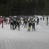 The Great Ski Race
