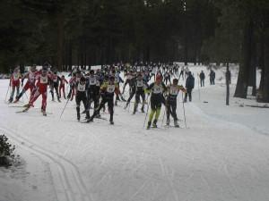 The Great Ski Race