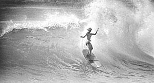 Endless Summer The Evolution of Surf Films