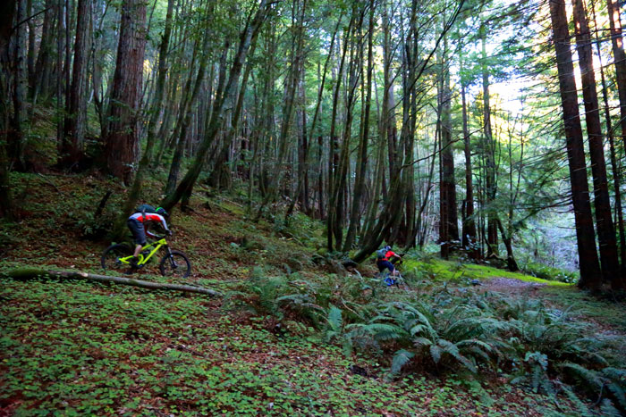 Riders in fine form taking on Enchanted Loop at Wilder State Park. Photo: Bruce Dorman