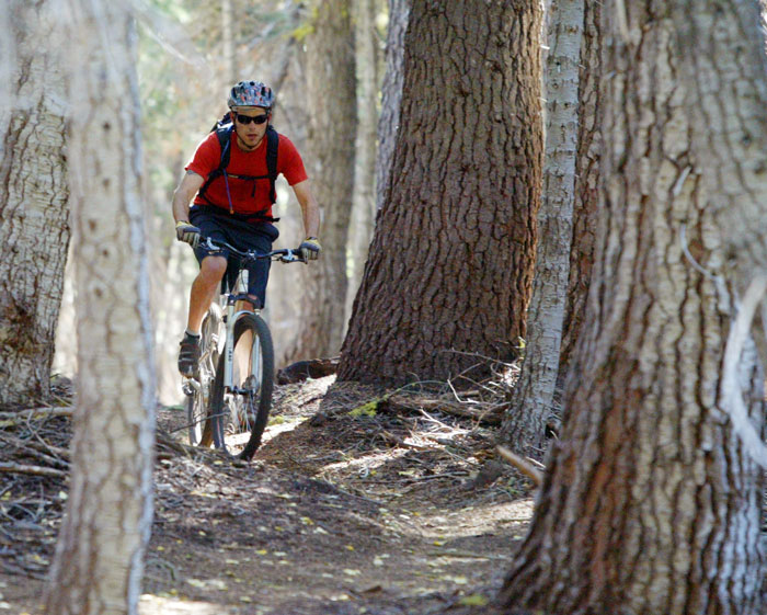 Mountain biking made available on the Land Trust's protected open space. Photo: Emma Garrard/Sierra Sun