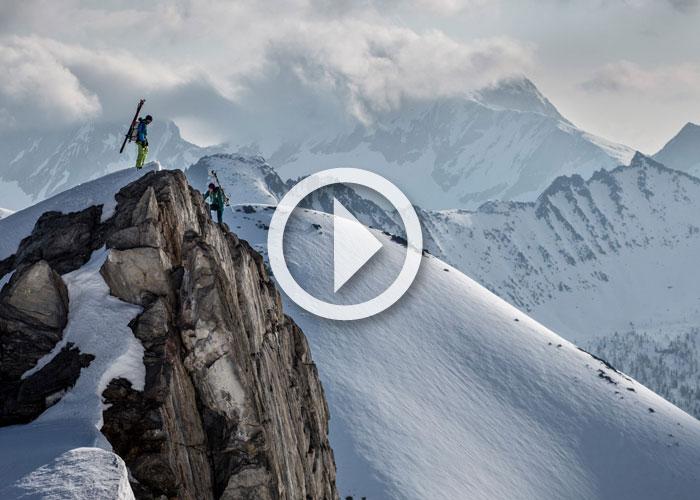 """Video: """"Jumbo Wild"""" Trailer"""