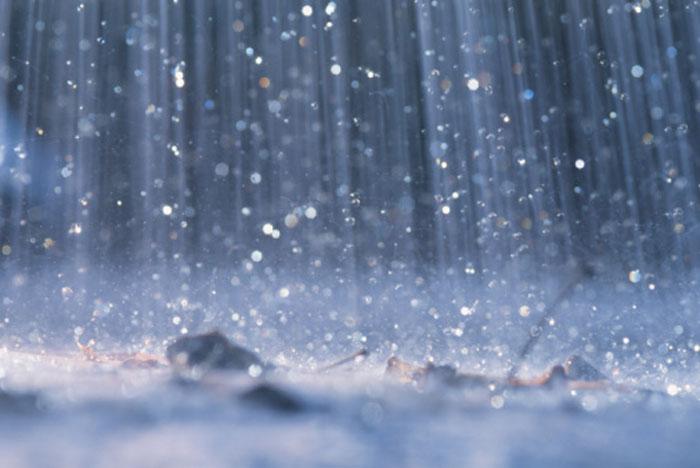 Fat Tire Tuesday: Ahhhh You Guys! Rain!!!