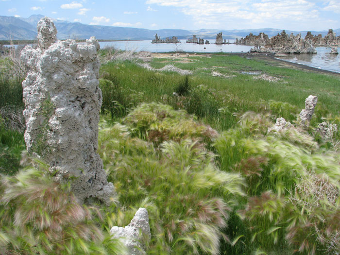 A glimpse of Mono Lake.
