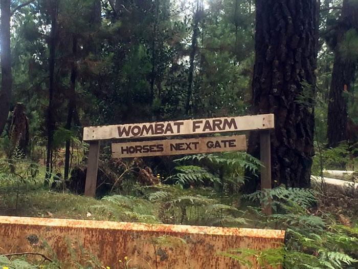 wombatfarm