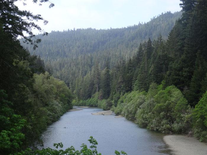 Humboldt wilderness.