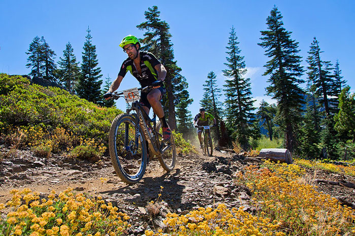 racers_mountain_flowers_2