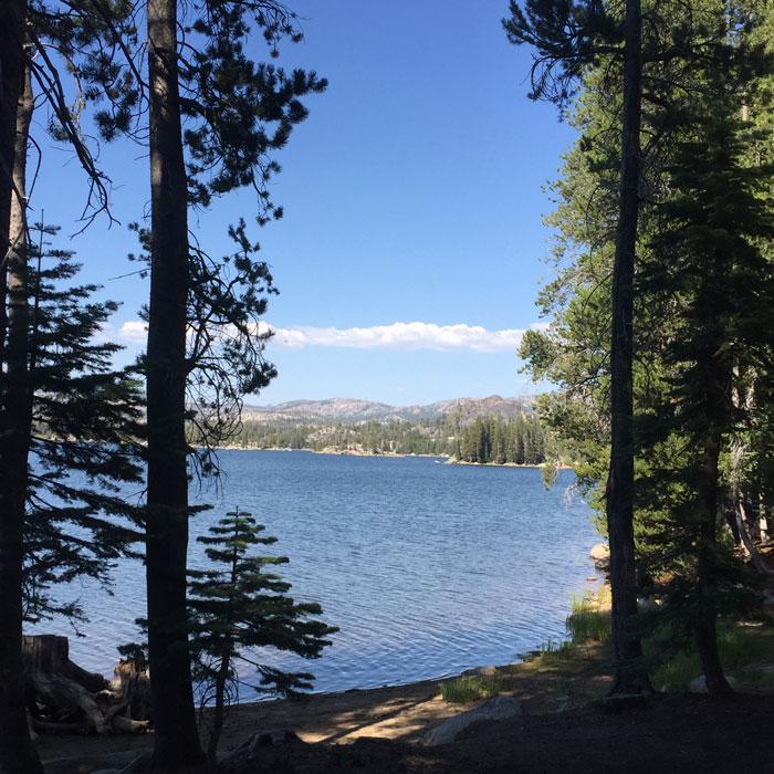 One of the beautiful reservoirs nestled neatly below Bear Valley and Lake Alpine.