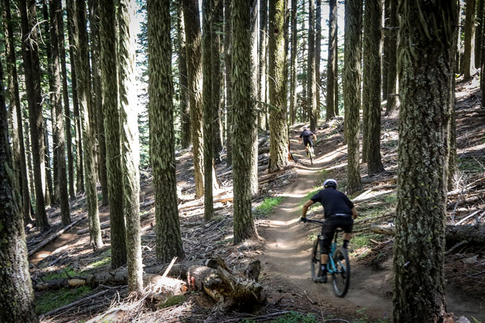Ripping through the trees on AMC's fast, loose course. Just over the California border in Oregon, Ashland provided pine trails for miles and solid elevation gain/descend for four stages of amazing enduro action. Photo: Called to Creation.