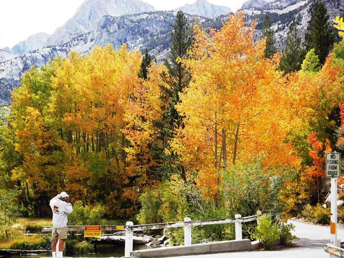 fall-lake-sabrina