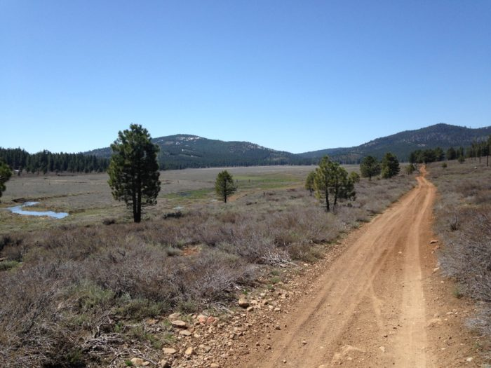 Dirt Fondo Course Preview