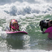 "Surf Dog Ricochet Cast in 3D IMAX Movie ""Superpower Dogs"""