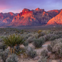 Save Red Rock Celebrates Major Victory for Red Rock Canyon National Conservation Area