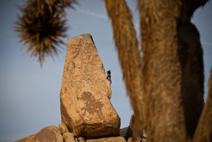 Headstone, Joshua Tree