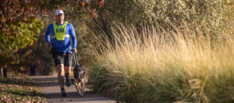 Ruffwear Launches Spring 2019 Product Line for Working and Service Dogs