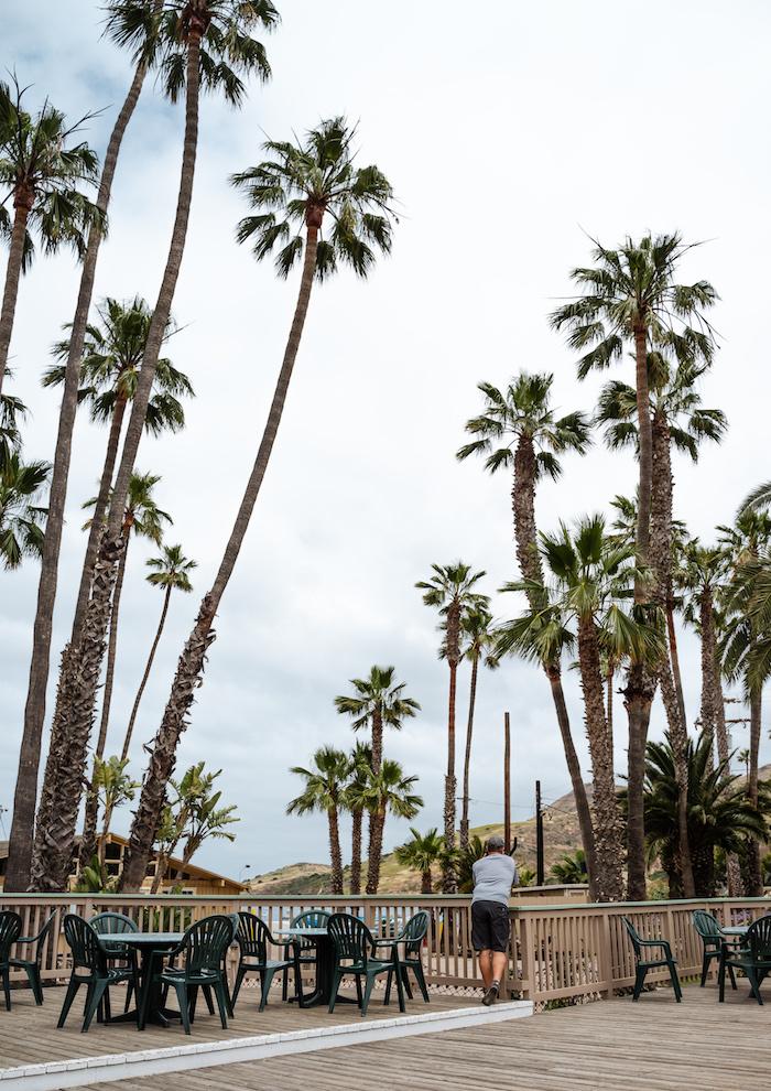Bikeacking Catalina