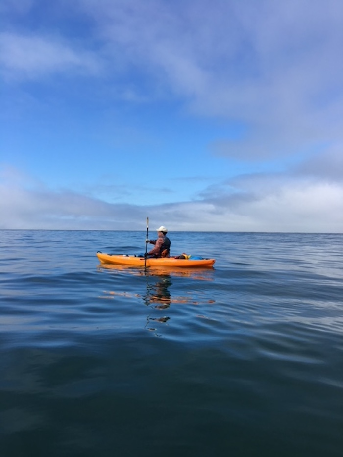Paddling Around the Bay