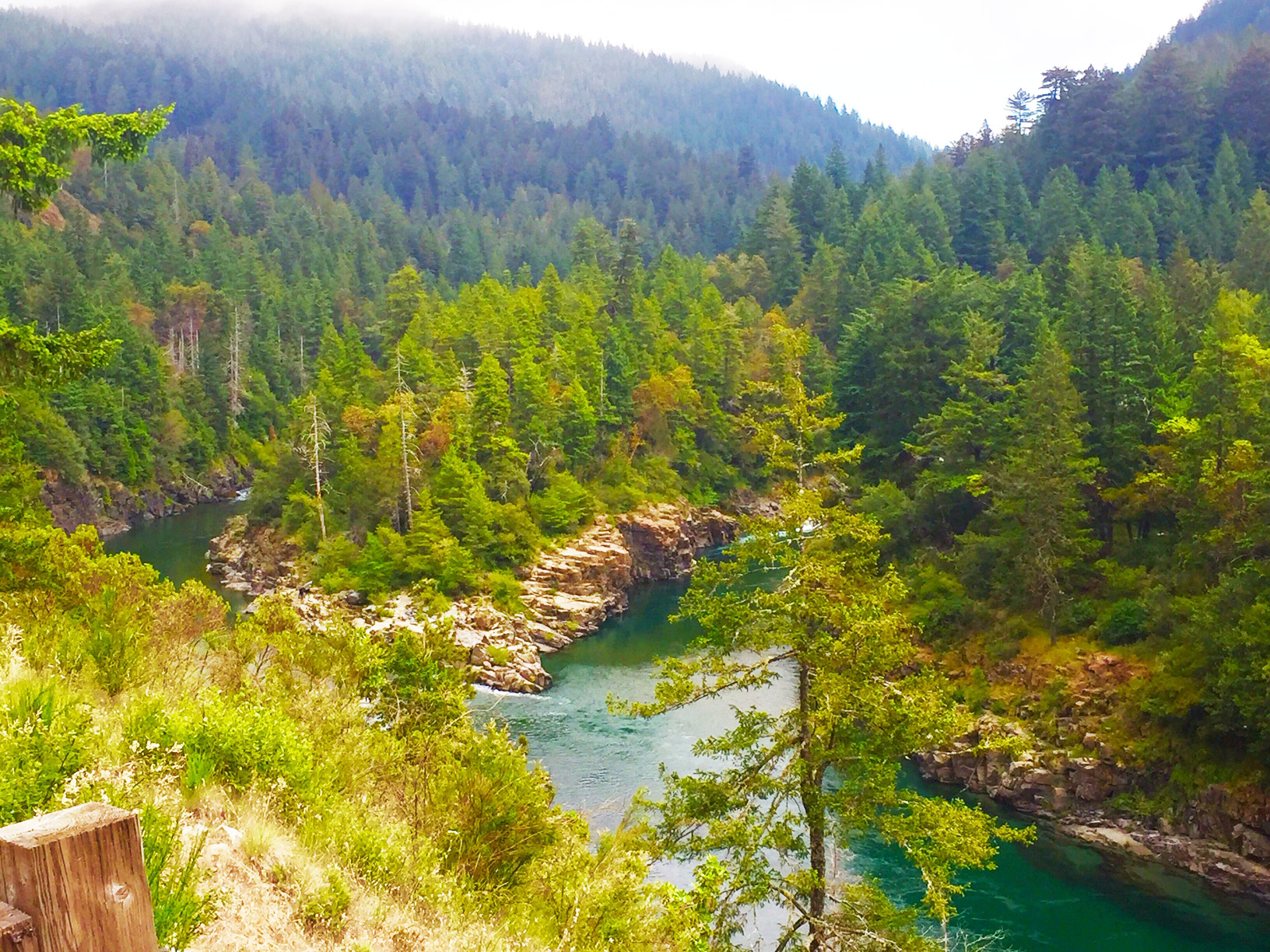 Looking down at the Smith River and surrounding forest from up above.