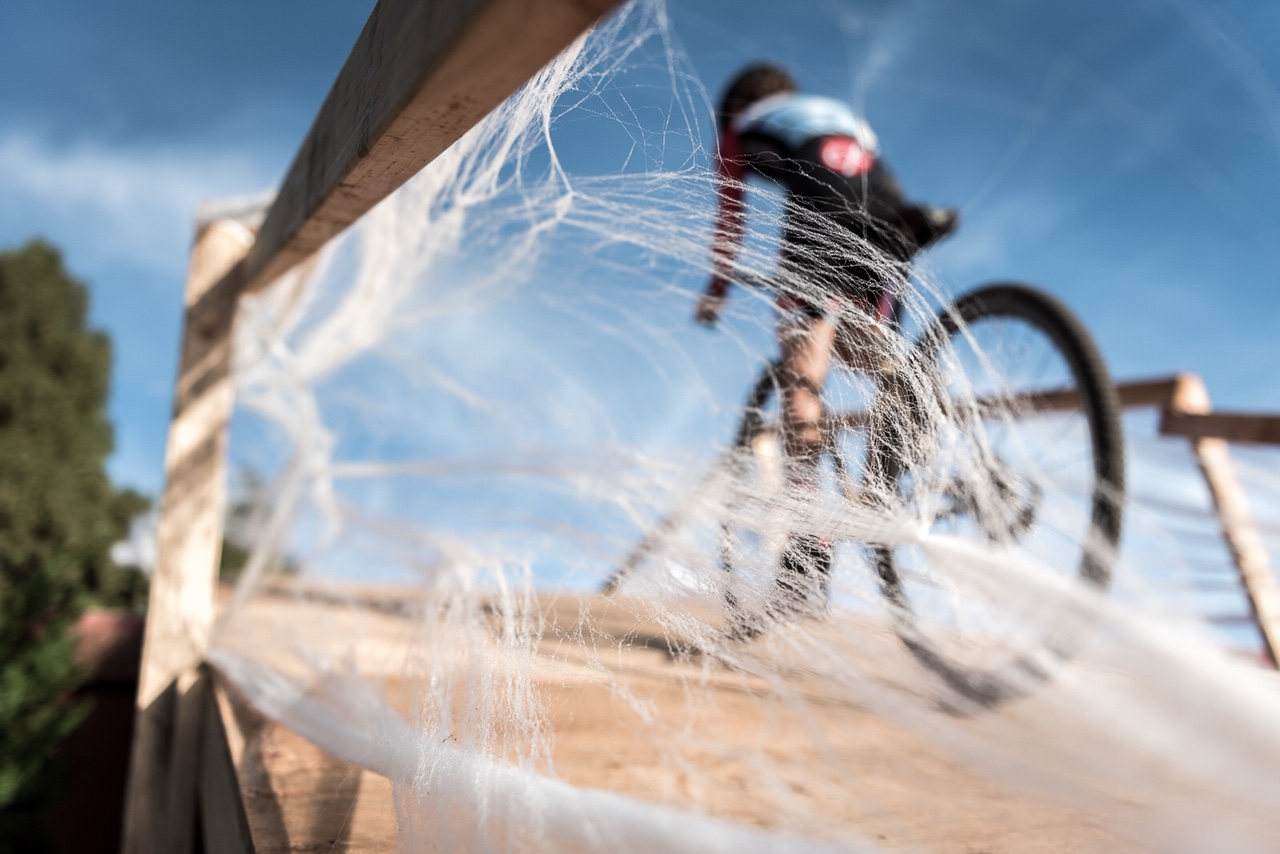 Person riding a bike with cobwebs in the foreground