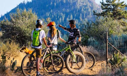 EcoBike Adventures Offers Guided E-Bike Tours in the Bay Area and NorCal Mountains