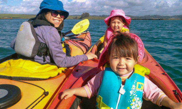 Give the Gift of Wildlife, Salt Water and Magic with Kayak Connection