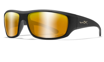 Wiley X Omega Sunglasses with Captivate Lenses