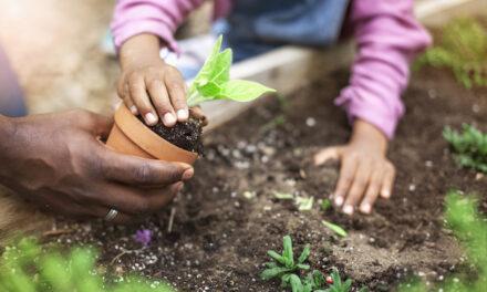 Raising Conservation Kids