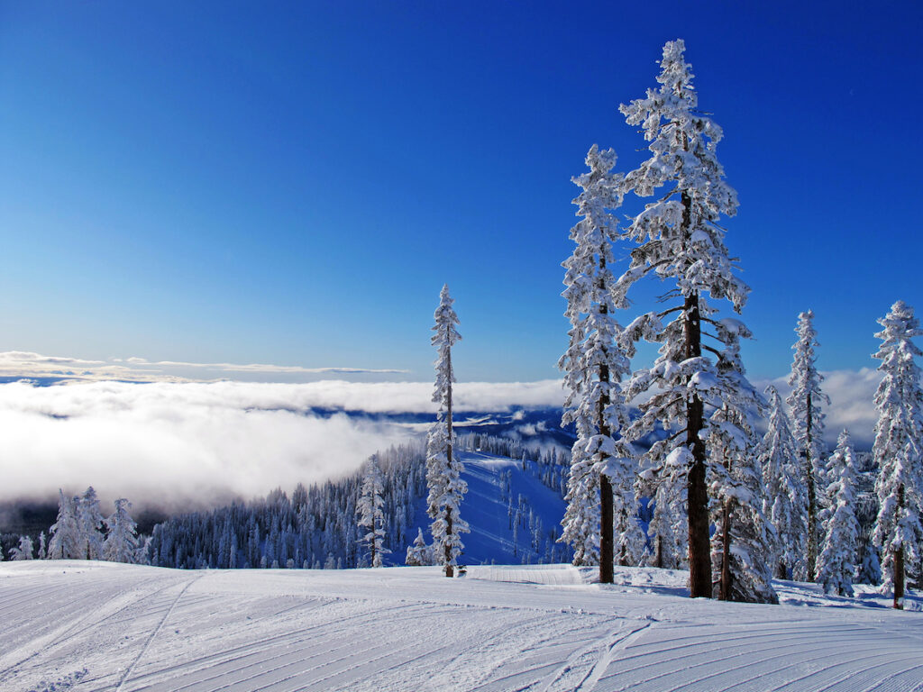 Skiing in the Time of COVID