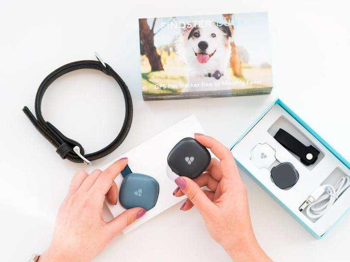Findster Duo+ GPS Pet Tracker
