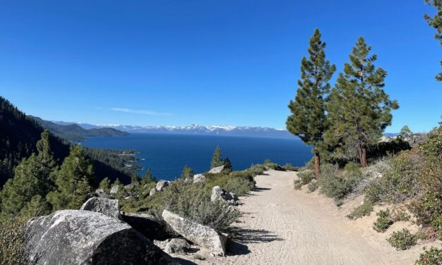 Tahoe Fund Launches Matching Campaign for New Tunnel Creek Singletrack