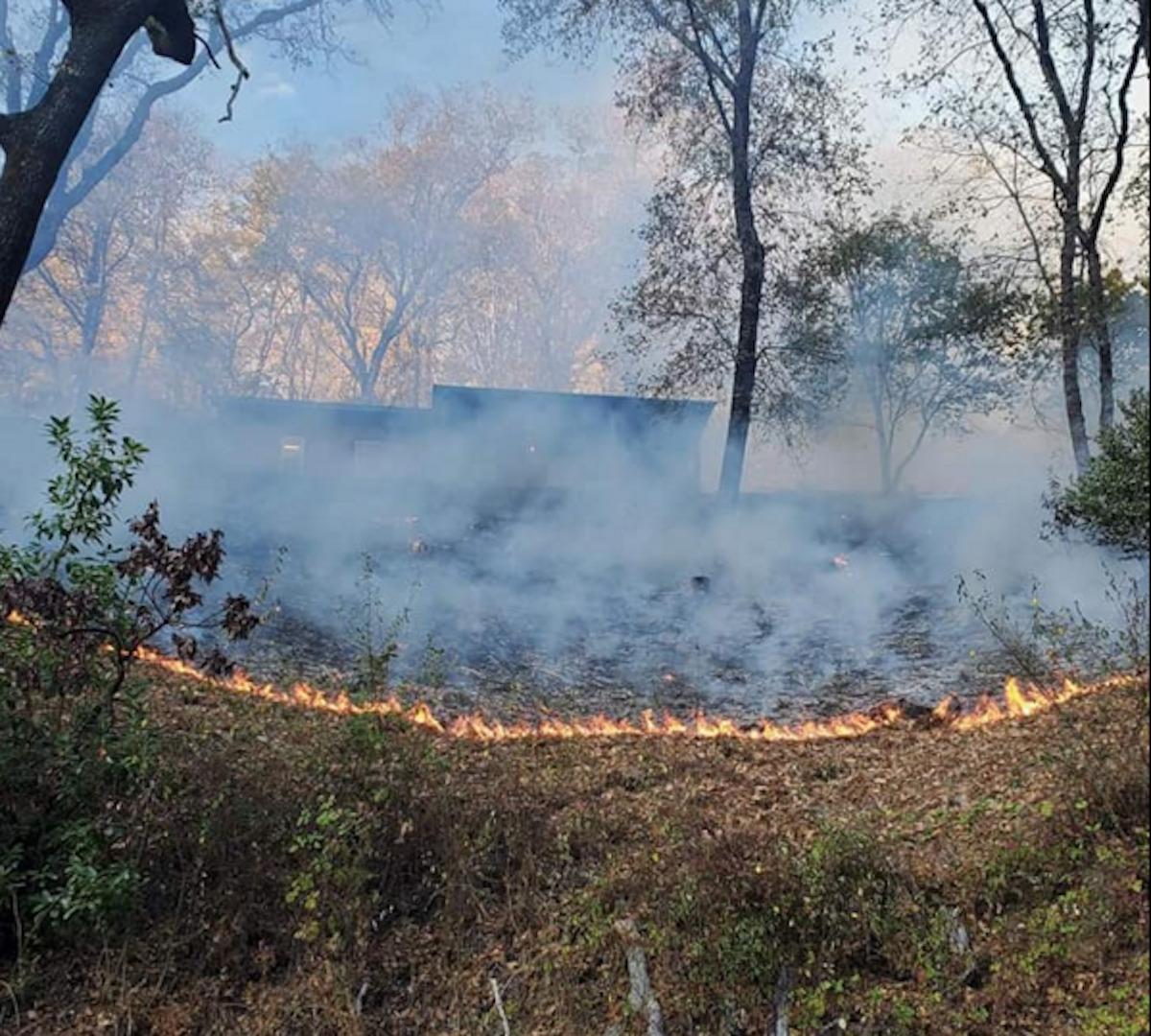 Indigenous fire management